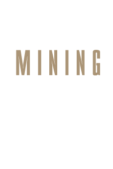 Redden Mining Consulting Mining Engineers